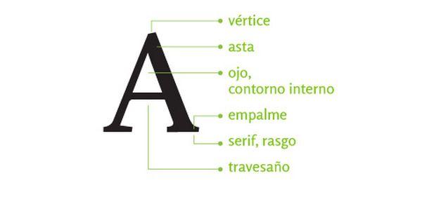 Anatomía Tipográfica | Designals | Tipografía | Pinterest | Anatomía ...