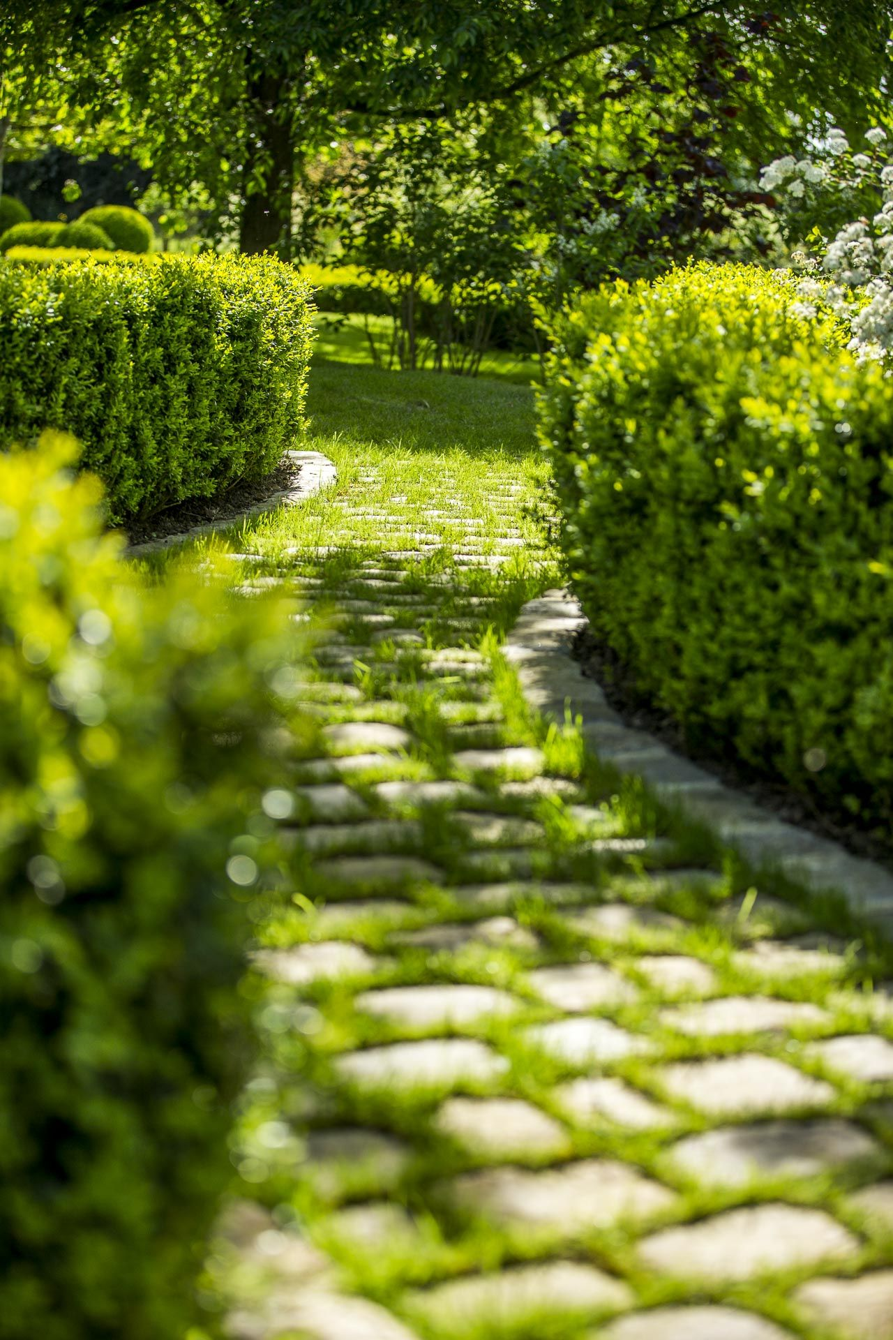 Allee De Paves De Granit Du Domaine D Ablon Paves De Jardin