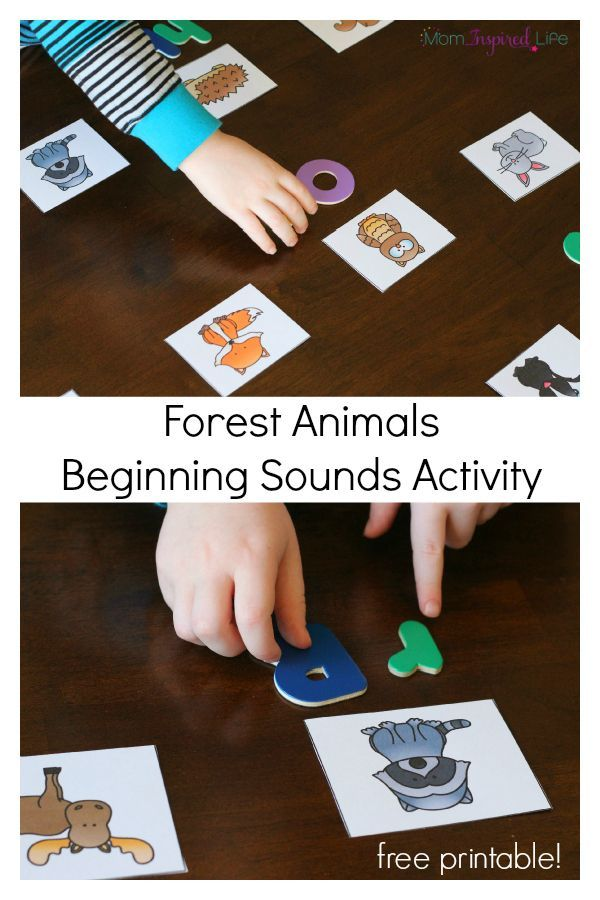 forest animals beginning sounds activity teaching preschool forest habitat animal. Black Bedroom Furniture Sets. Home Design Ideas