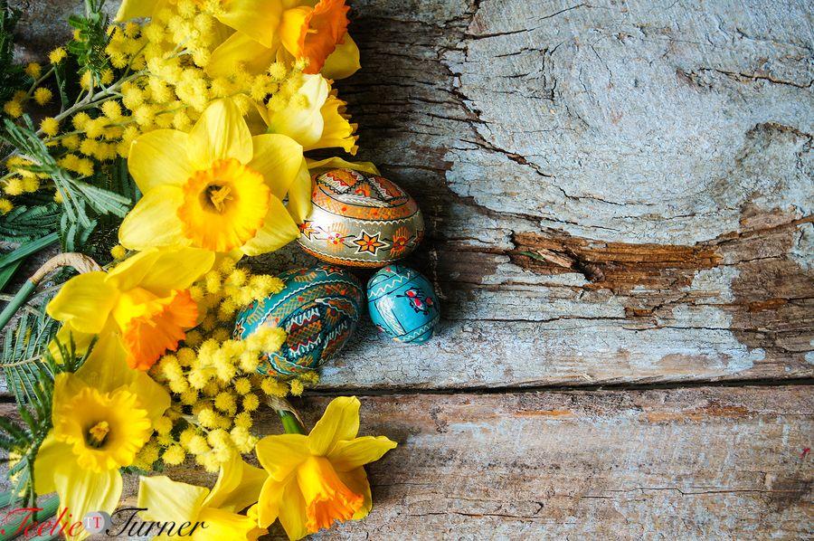 Happy Easter! #teelieturner