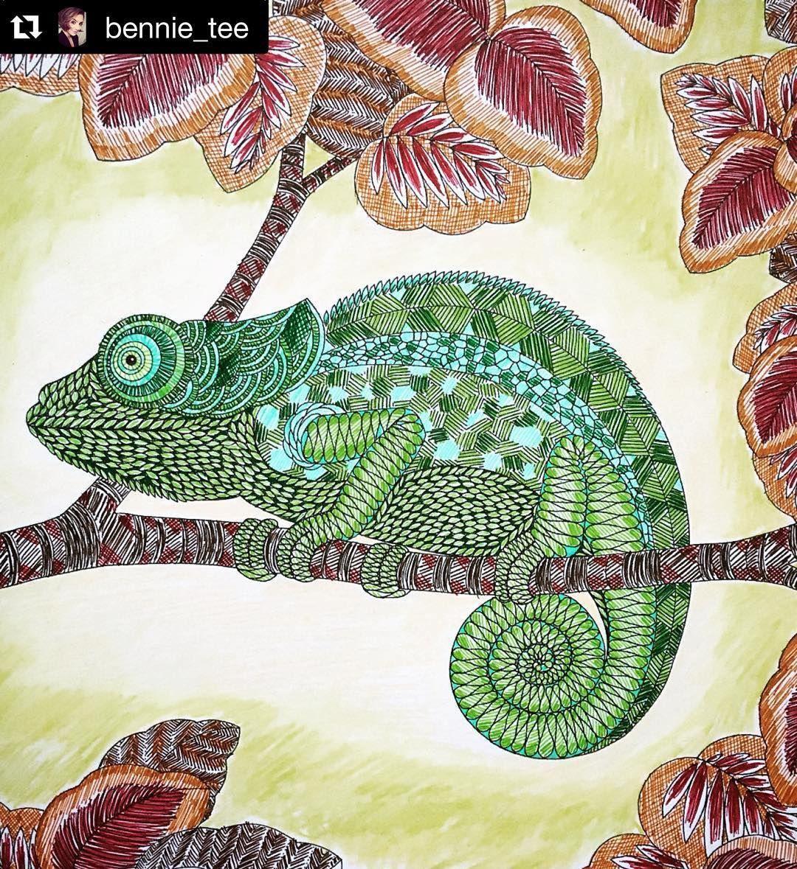 Coloridos Da Millie Marotta On Instagram Um Arraso Repost Bennie Tee Chameleon From Millie Marotta S Animal Kingdom C Kleuren Kleurplaten Schilderij