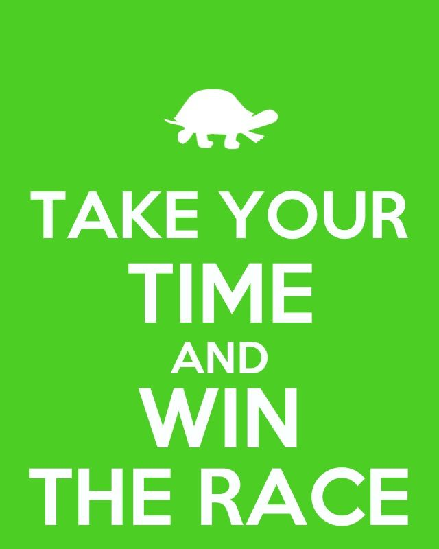 Tortoise And The Hare Tortoise And The Hare Pinterest Keep