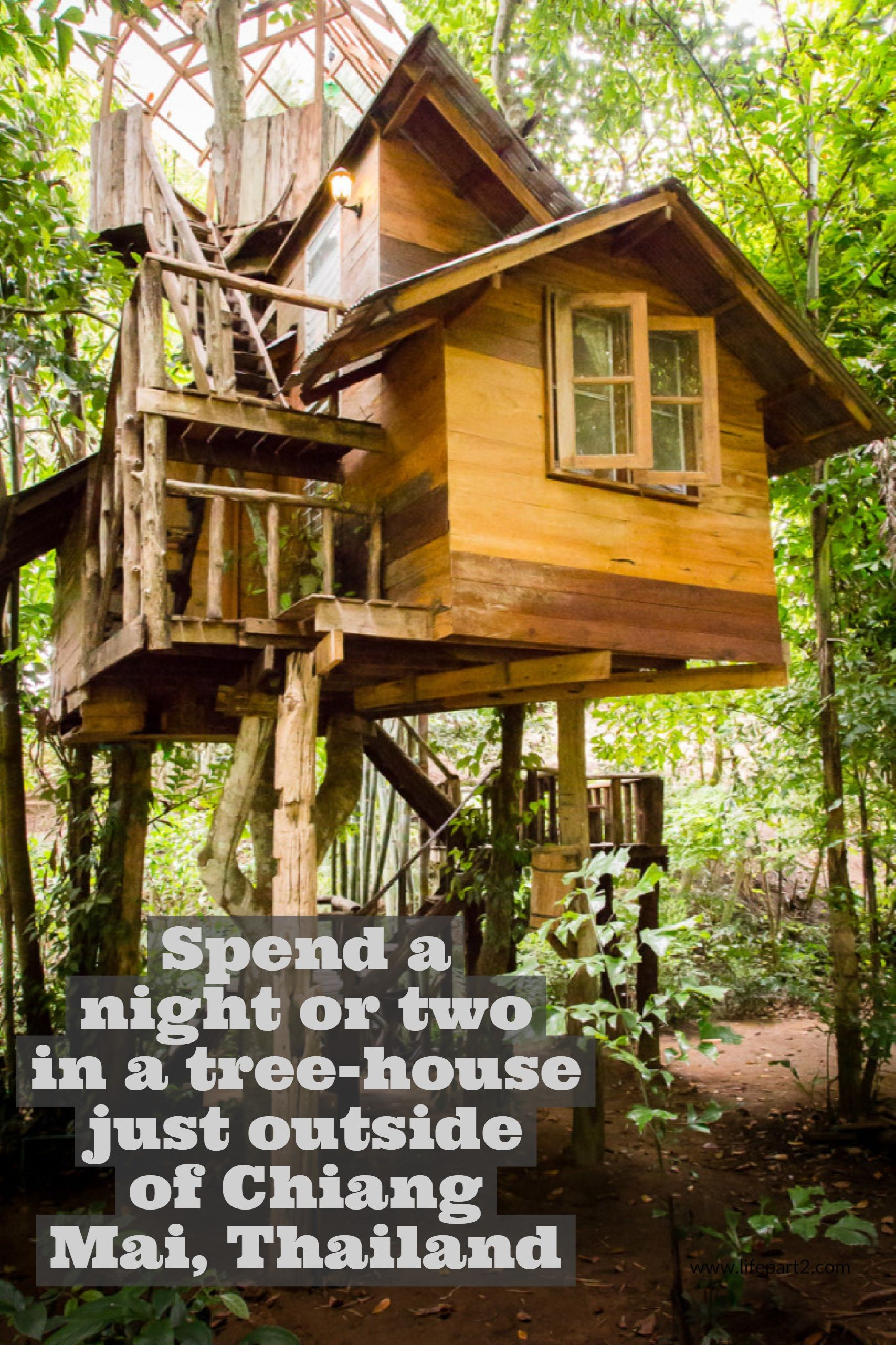 Treehouses for Grown Ups! Luxury tree houses, Tree house