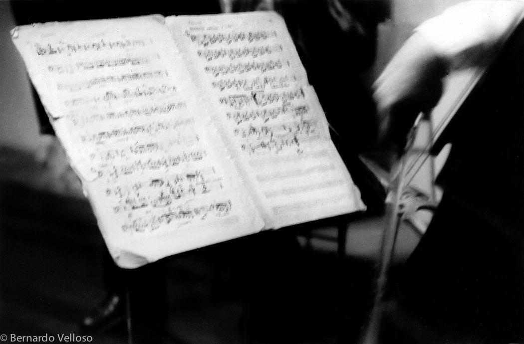violoncelo - null