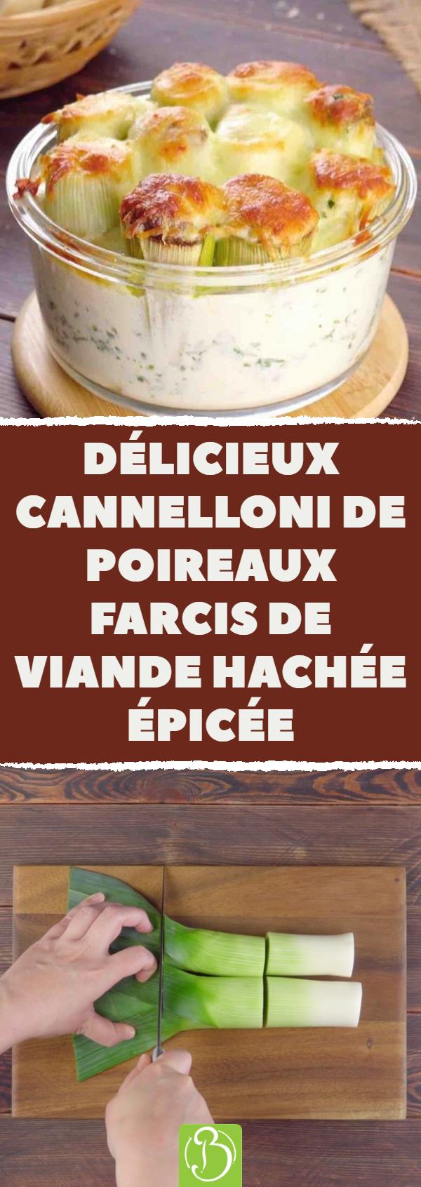 Délicieux cannelloni de poireaux farcis de viande hachée épicée ...