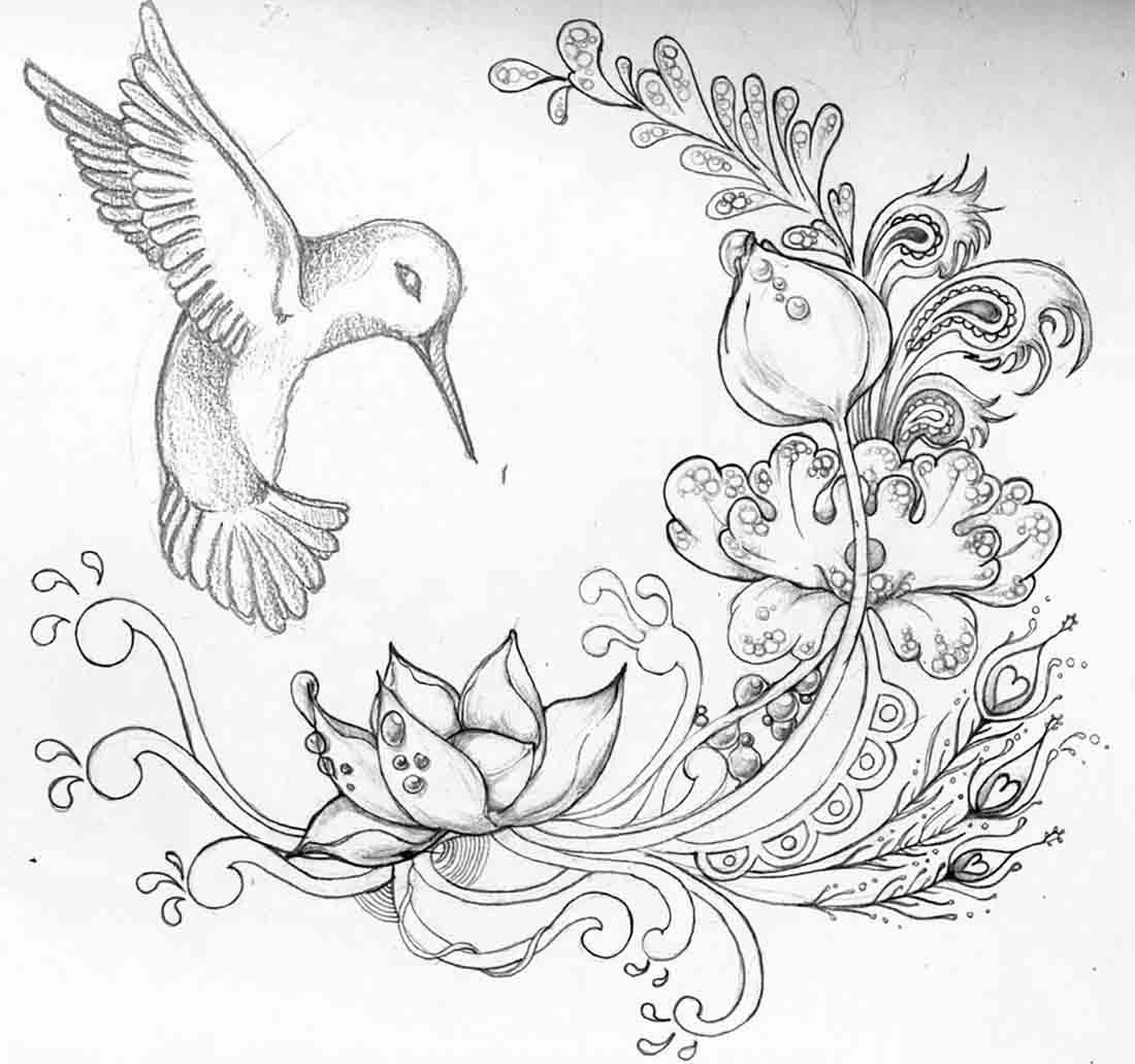 Pencil Sketches Of Flowers And Birds Black And White