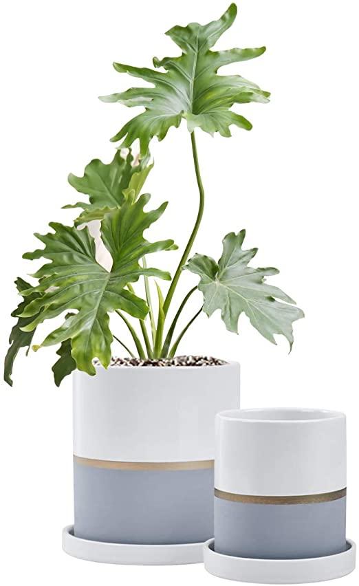 Amazon Com Fieren White Ceramic Flower Pot Garden Planters 6 4 Large Plant Indoor Pot Containe In 2020 Indoor Flower Pots Ceramic Flower Pots White Planters Indoor