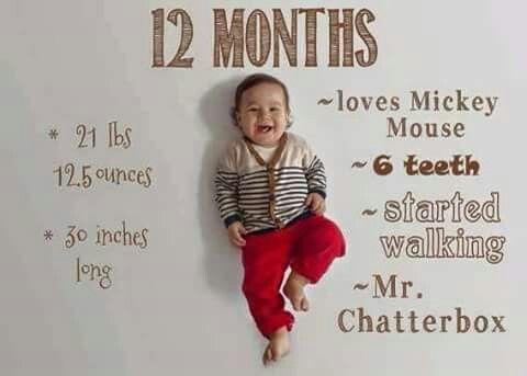 1-12 Monate kreativ festgehalten | Baby-/Kinderfotografie ...