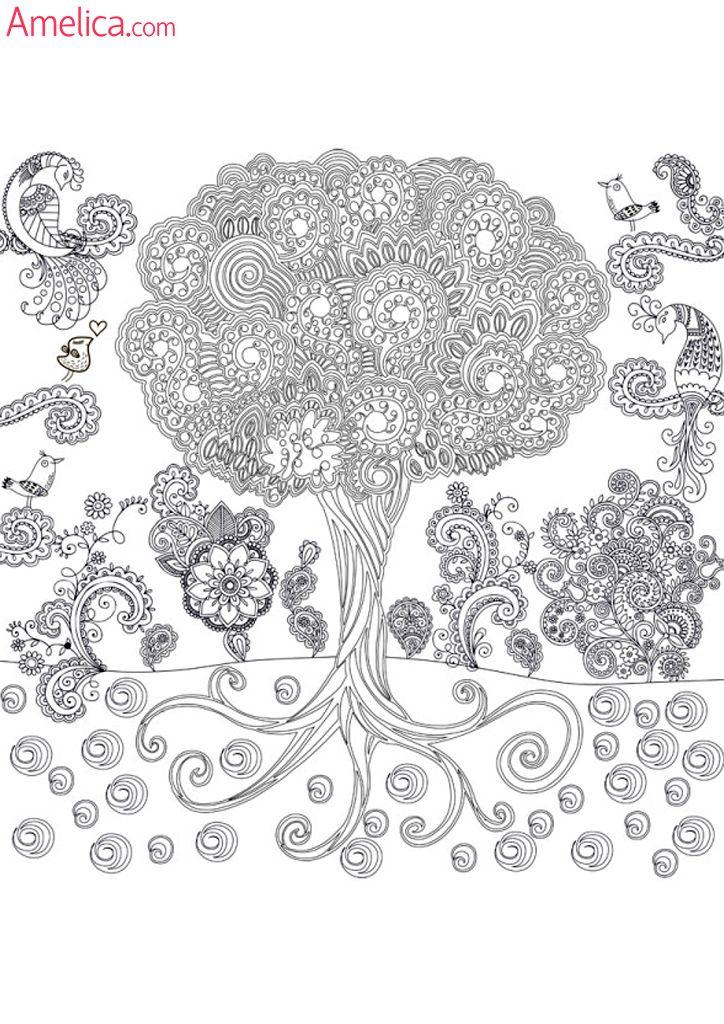 раскраски взрослые волшебный сад, зачарованный лес ...