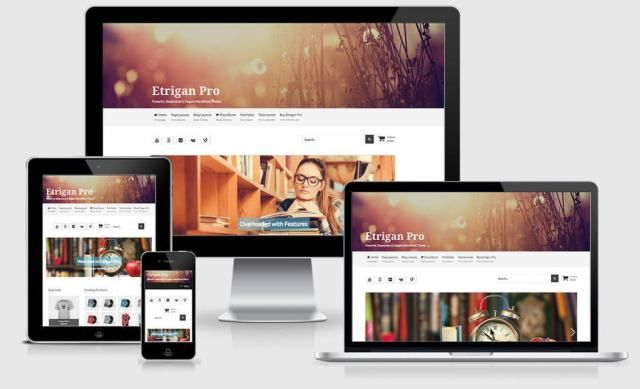 Download the best free & premium responsive WordPress themes from ...