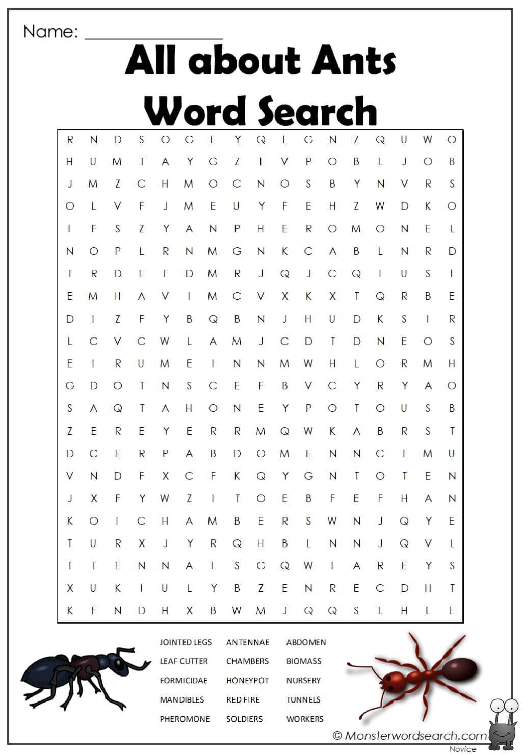 All About Ants Word Search In