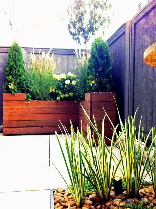 Planter boxes use a clean modern design plant grasses for Garden box landscape and design