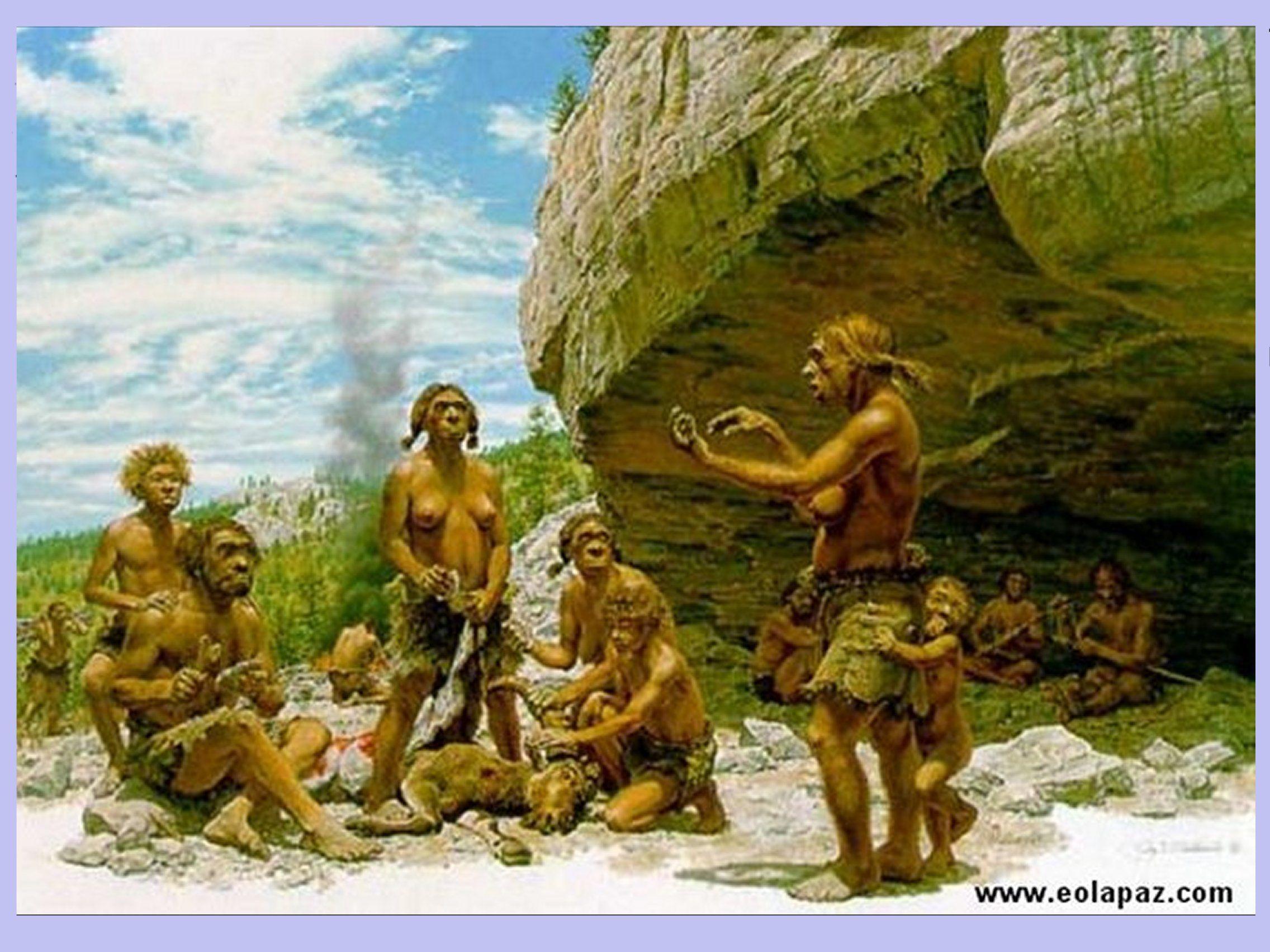 Paleolitico Comunidad