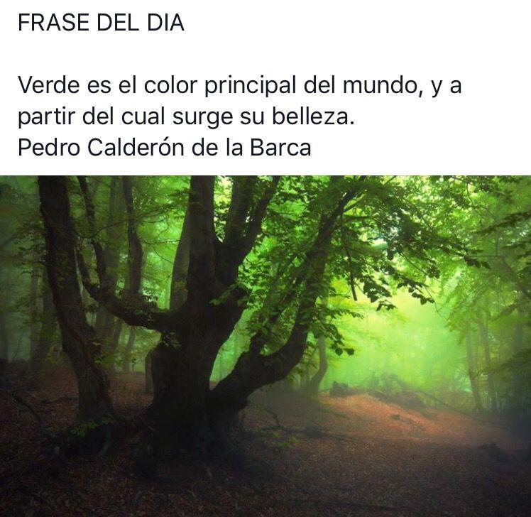 #citas #frases #frasesnaturaleza #frasedeldia #céspedsintetico #jardinería #paisajismo #gardening #landscape #artificialgrass #grass #padel #Valladolid  #flores #plantas #naturaleza #tenis #podasenaltura #talas #flordepascua