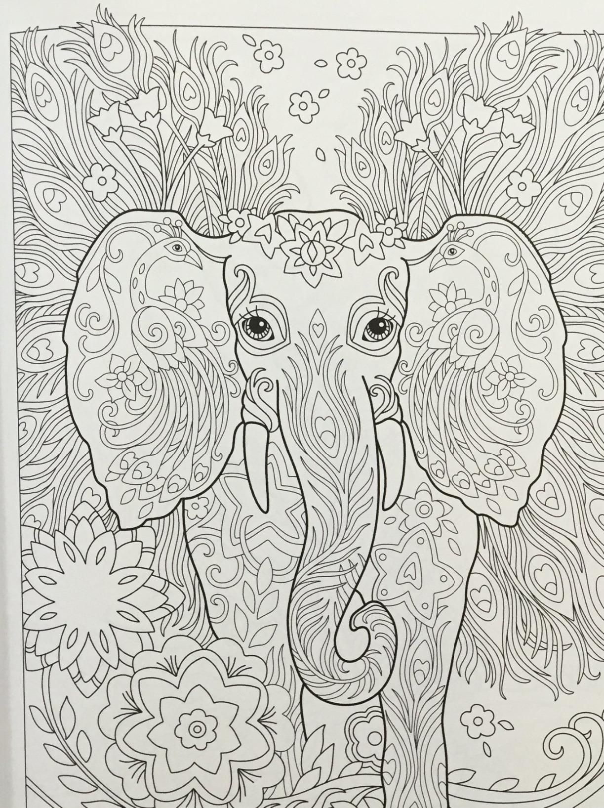 - Pin By Kathy Carney On Coloring Pages - Animals Elephant