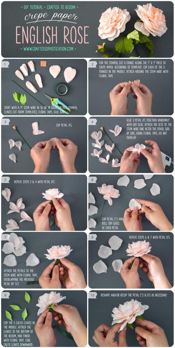 Photo of DIY Krepppapier Englische Rose – DIY Papier Blog #paperflowersdiy