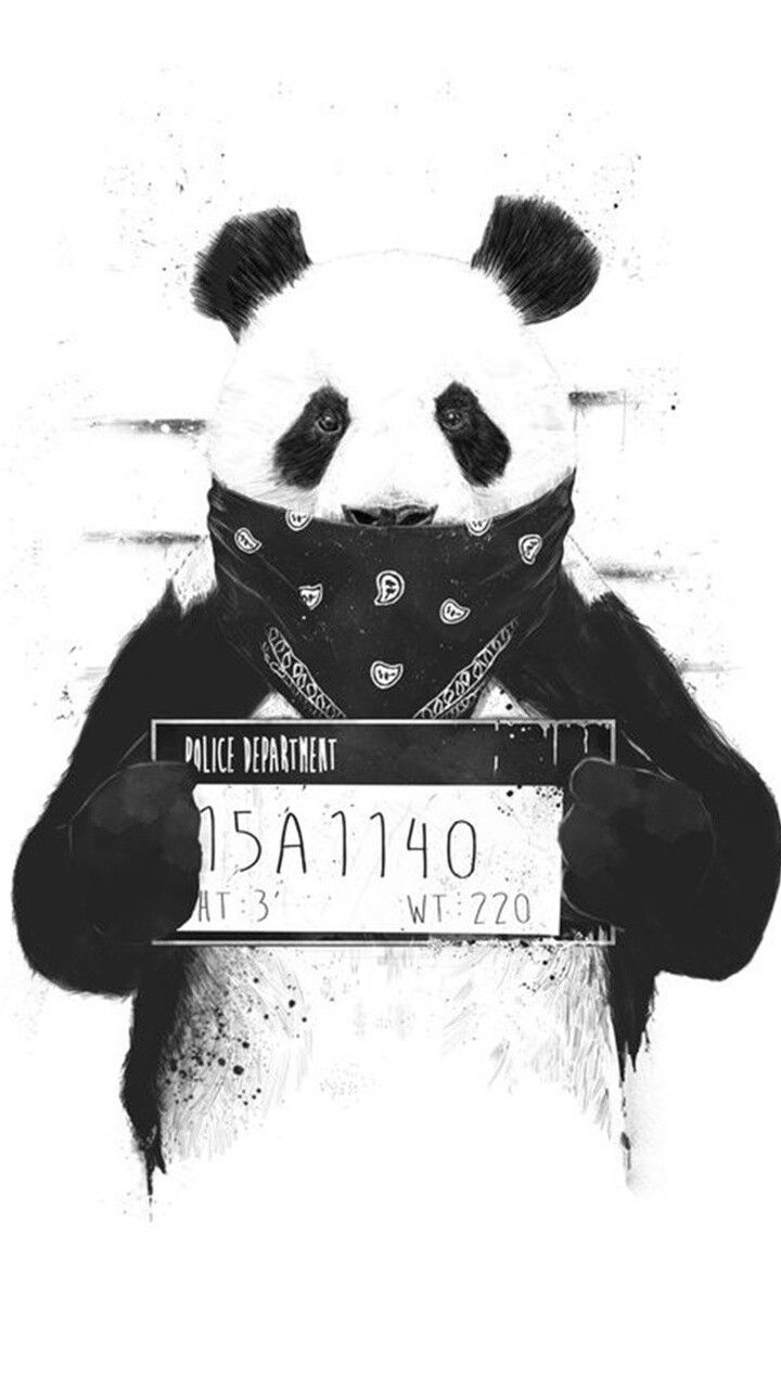 Panda Thug Cutee In 2019 Pinterest Panda Wallpapers Panda And