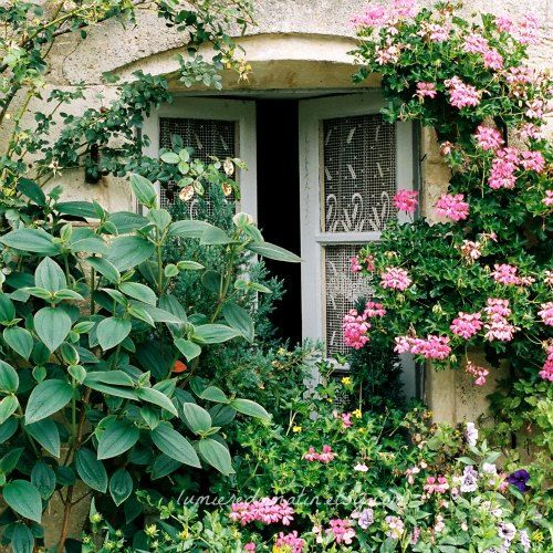 French Country Cottage Feature: Best 25+ French Cottage Garden Ideas On Pinterest