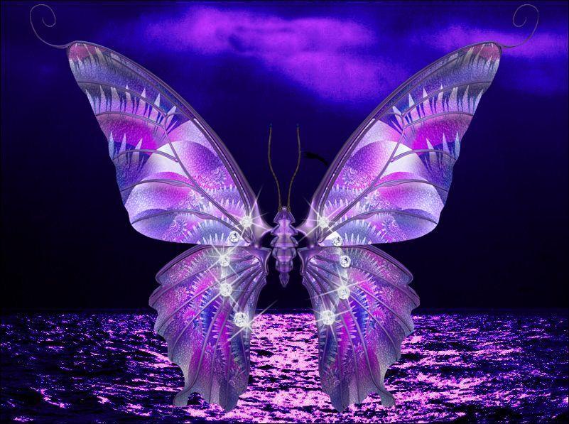 Protector de pantalla con movimiento de mariposa imagui for Protector de pantalla en movimiento