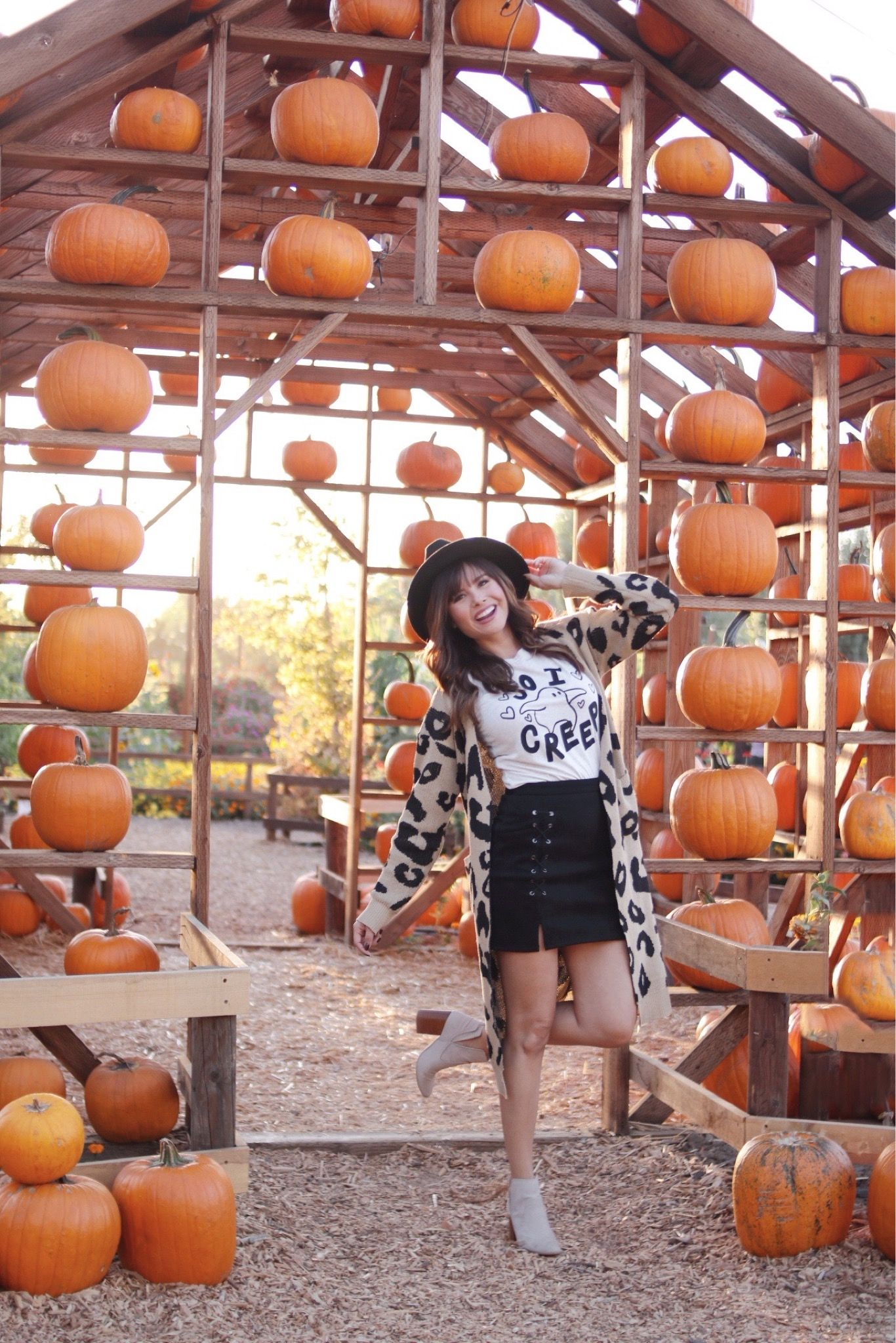Fall Pumpkin Patch Pictures