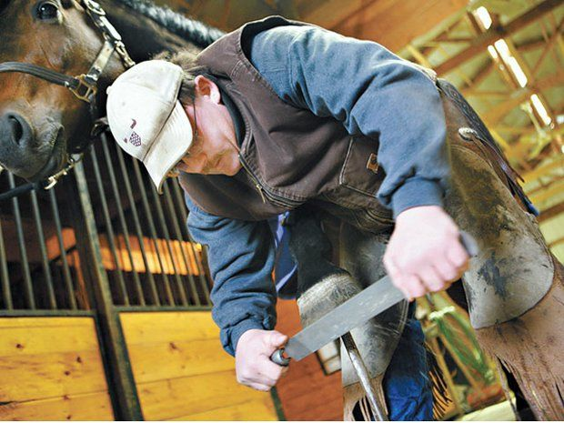 """Veterinarian/Farrier """"Wish List"""": Does Your Barn Measure Up?"""