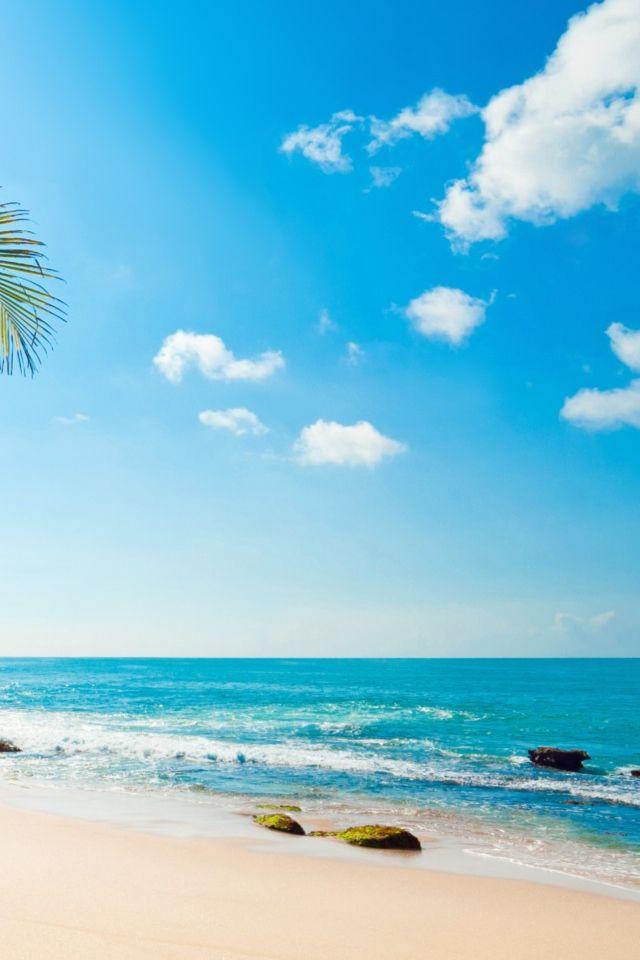 Tropical Sunshine Iphone 4s Wallpapers Beach Wallpaper Beach