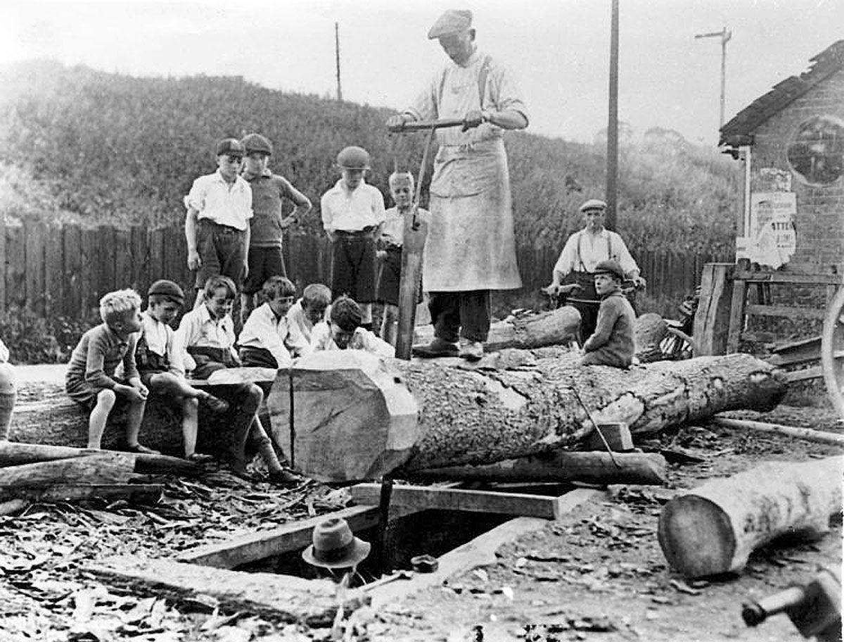 Sawing Lumber Tool Photos And Paintings Custom