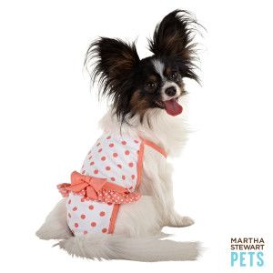 How Adorable Is This Marthastewartpets One Piece Swim Suit