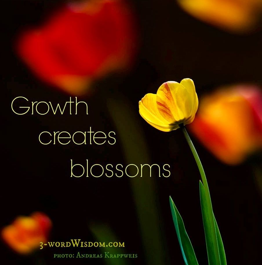 Growth Creates Blossoms Quote Via Facebook3wordwisdom And