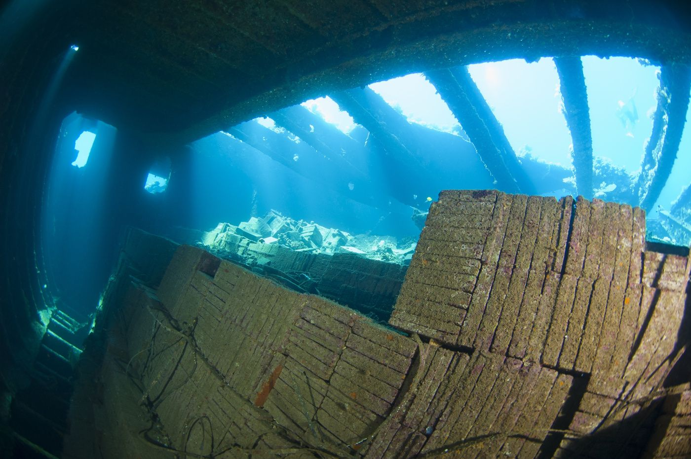 Dive Site: The Tile Wreck, Red Sea, Egypt