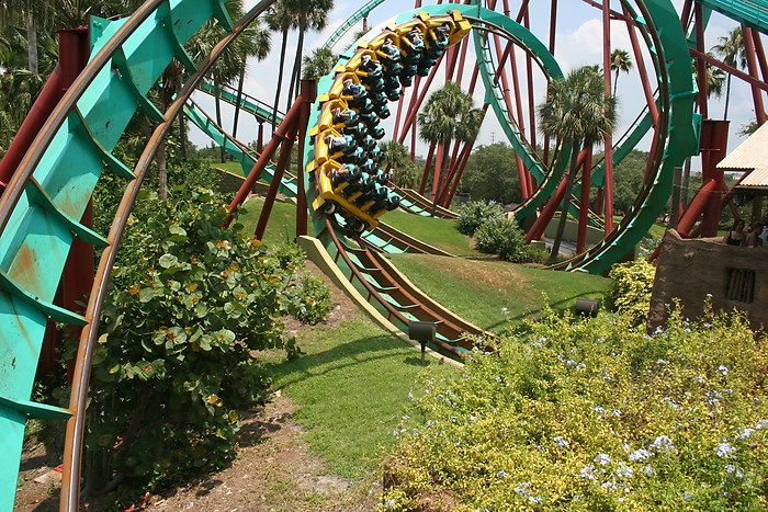 d4ed75a4750b93296282d341f456569e - How Crowded Is Busch Gardens Tampa