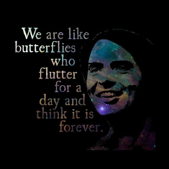 Carl Sagan Love Quote: We Are Like Butterflies - Carl