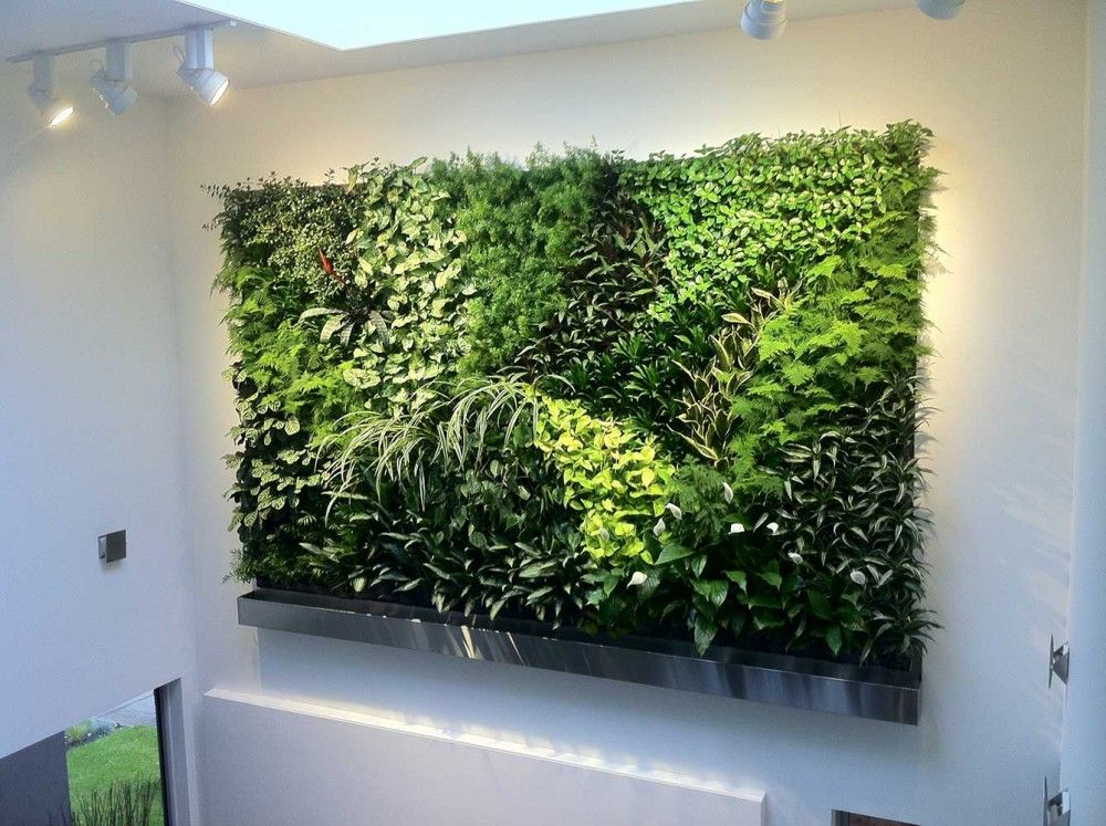 Greenery imports artificial plants we are australia 39 s for Vertical green wall