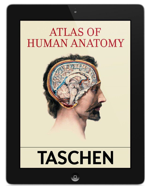 Bourgery. Atlas of Human Anatomy and Surgery. TASCHEN Books (eBook ...