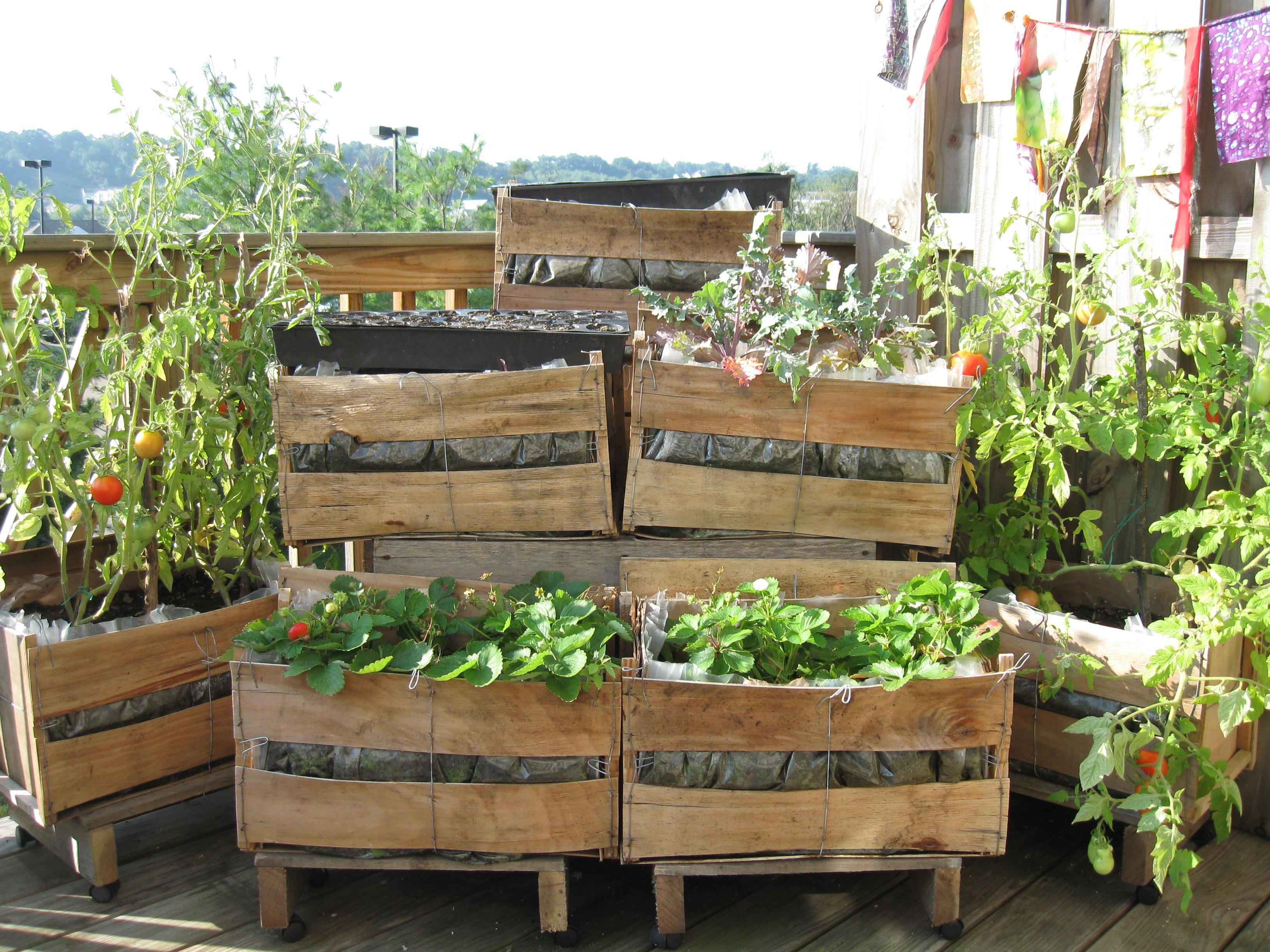 Diy Free Planters Wood Crates In Which The Grocery Stores Receive Their Corn On The Cob And Lined With Plastic P Crate Crafts Outdoor Landscaping Small Farm
