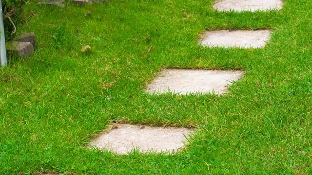 trittsteine reichen gewöhnlich nicht als gartenweg. (quelle, Garten und erstellen