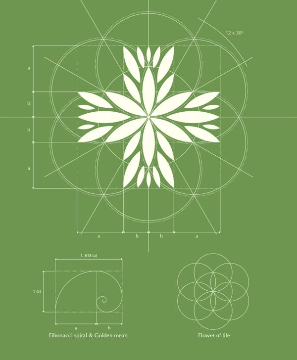 Czech Medical Herbs logo design on Behance