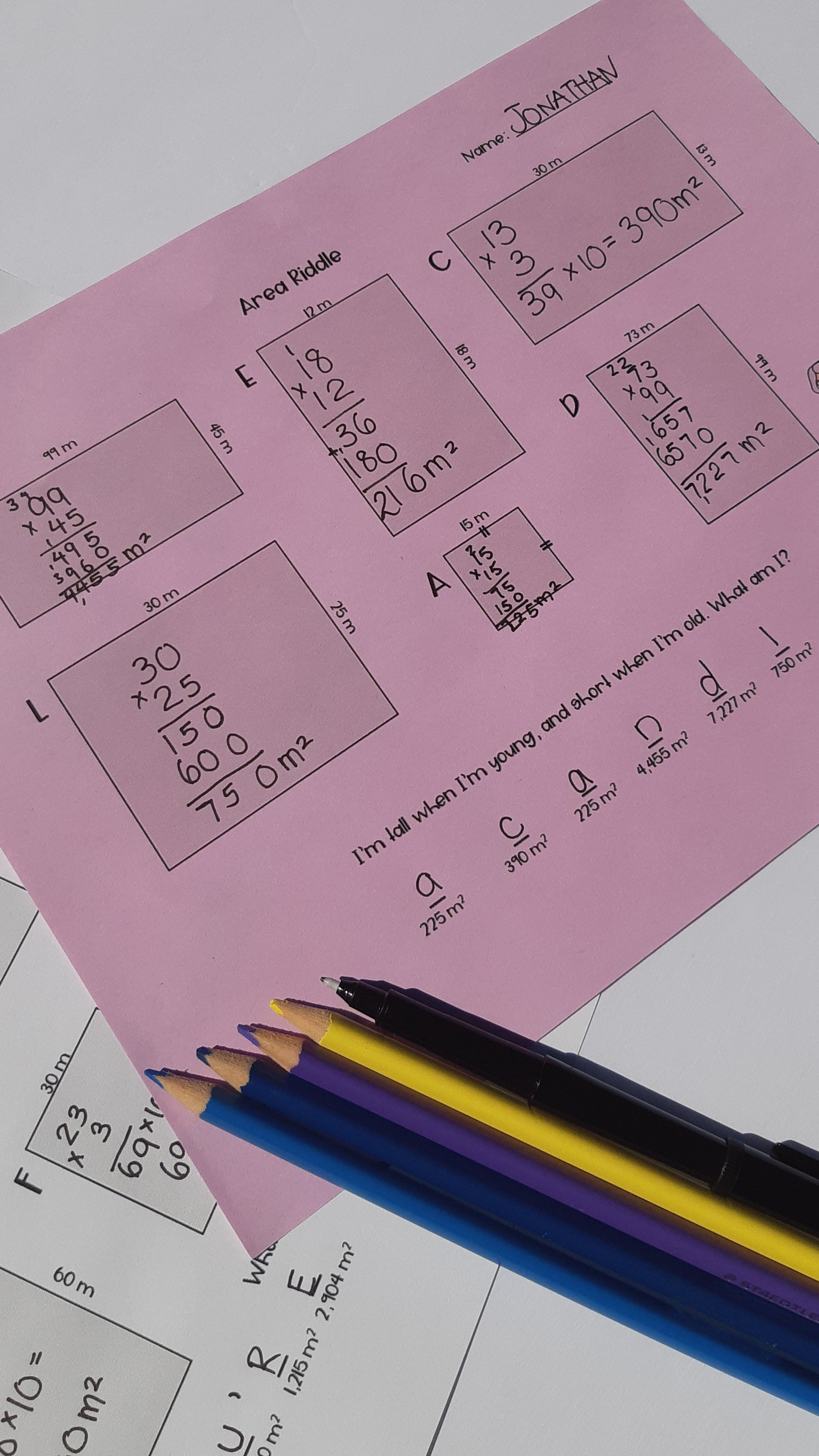 Self Marking Area Worksheet