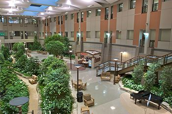 The Plant Filled Main Atrium Of The Henry Ford Hospital In West