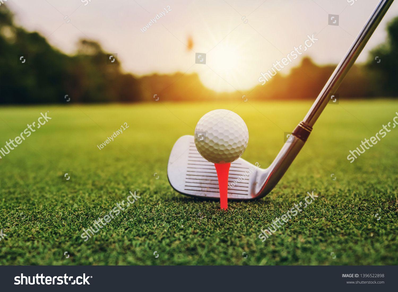 11+ Anne moller golf info