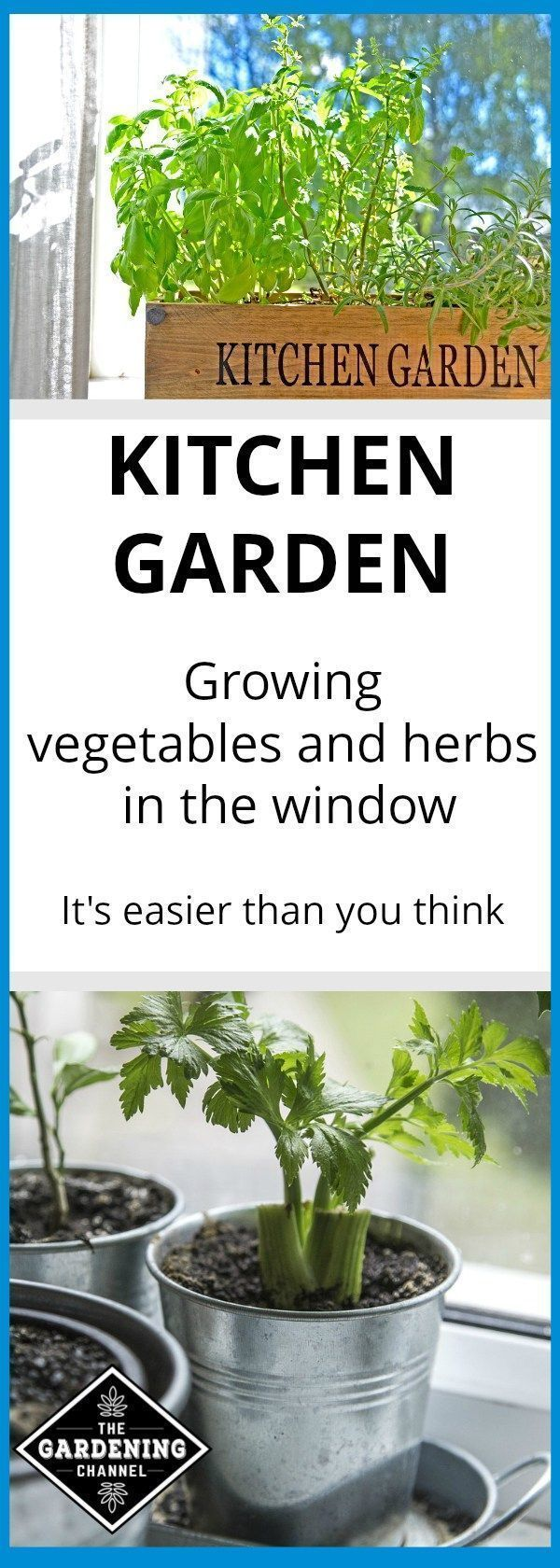 pictures Growing Vegetables Indoors Is Easier Than You Think (Even in an Apartment)
