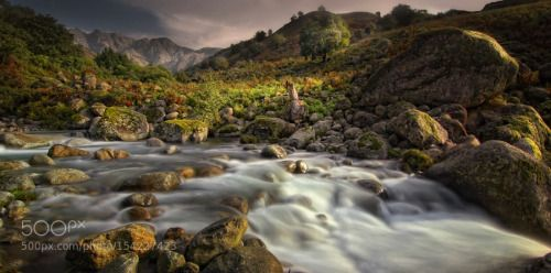 Gredos by amador  trees sky sunrise water river blue sun light clouds rocks beautiful green mountain rocas gredos mont