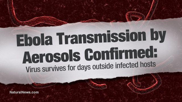 Ebola transmission by aerosols confirmed: virus survives for days outside infected hosts