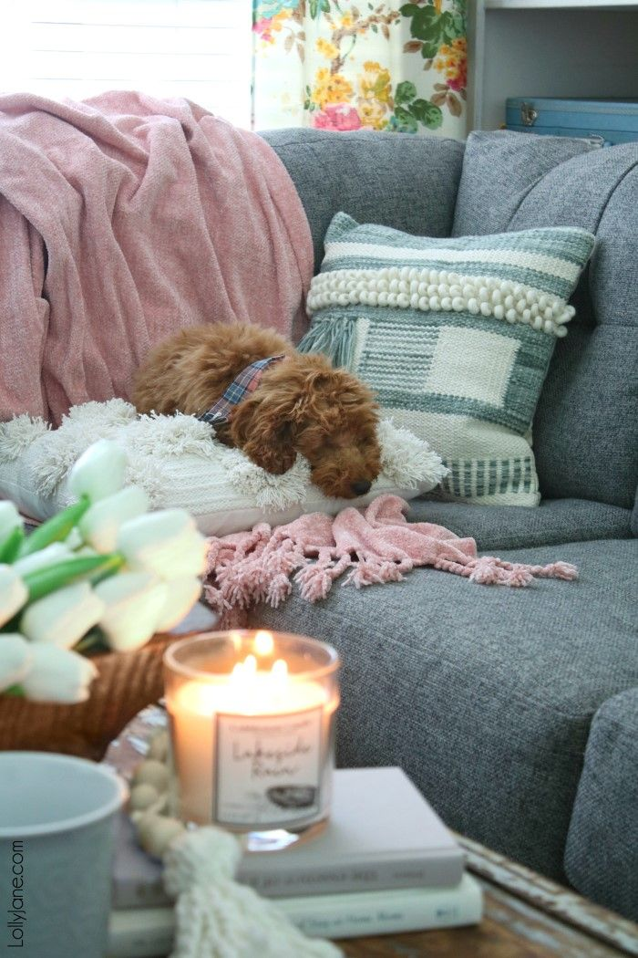Making Your Home Feel Cozy With Lolly Jane | Diy furniture ...