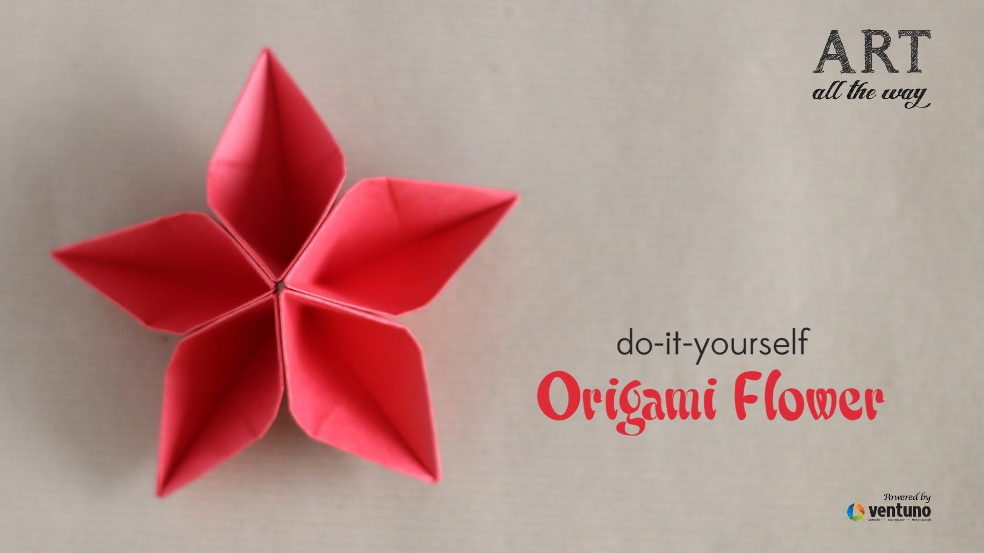 How To Fold Diy Origami Flower Flowers Pinterest Diy Origami