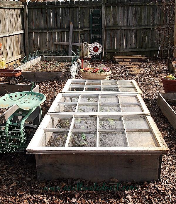 A Veggie Garden Post With Images Container Gardening