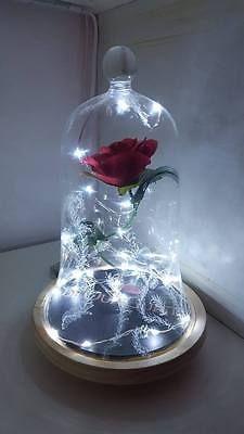 Beauty And The Beast Rose Light Bell Jar Disney Lamp Light