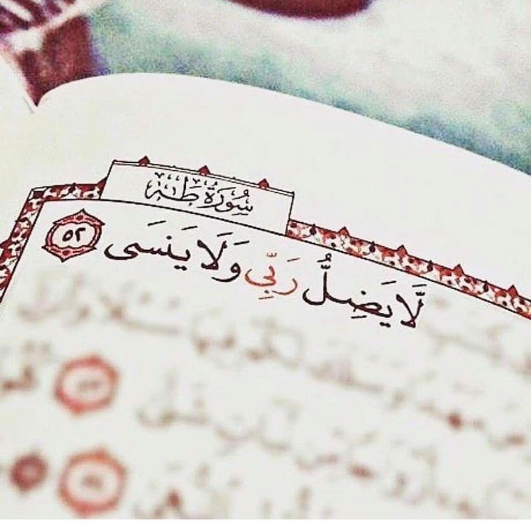 أفوض أمري إلى الله إن الله بصير بالعباد ربي كن معي فإني لا أقوى إلا بك يارب وظني فيك ياربي جميل Quran Quotes Love Quran Quotes Islamic Quotes Quran