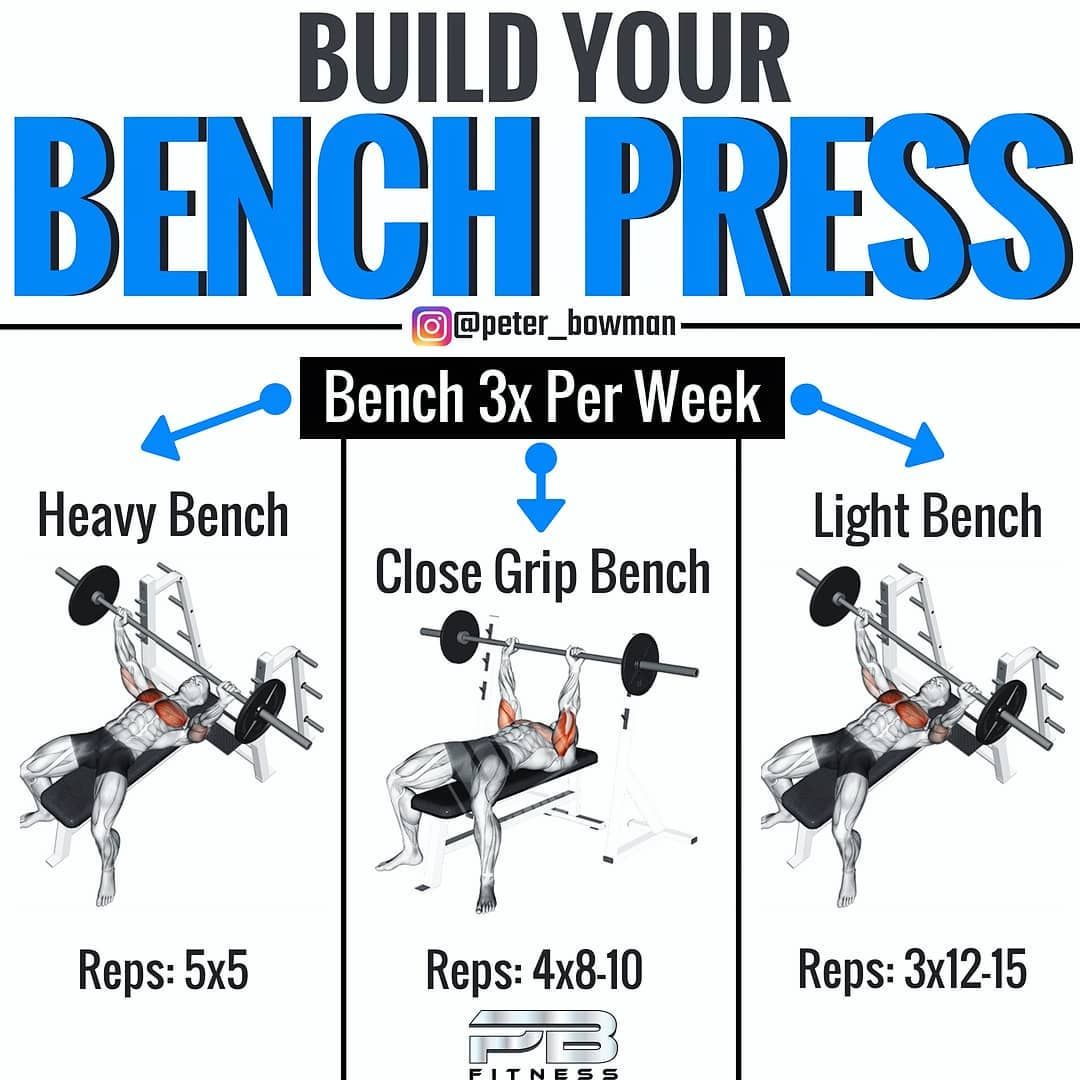 Bench Press Size Chart - BENCH
