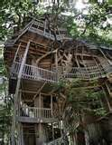 A Treehouse What?!